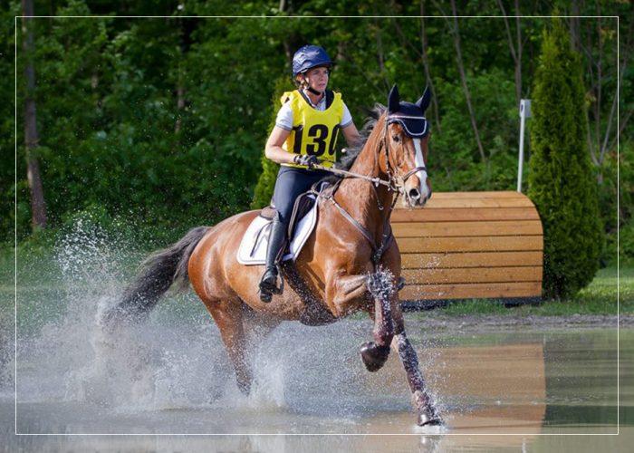 Staatl. geprüfte Bereiterin FN Carina Hofmeister - vielseitige Grundausbildung, Beritt und Ausbildungsplätze für Pferde